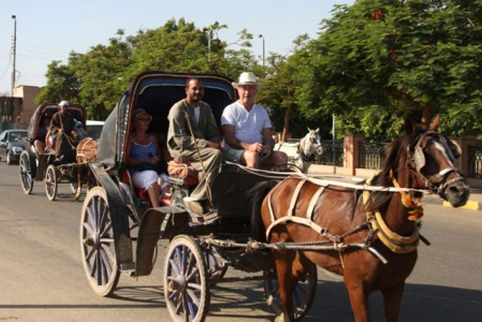 Luxor horse Carriage