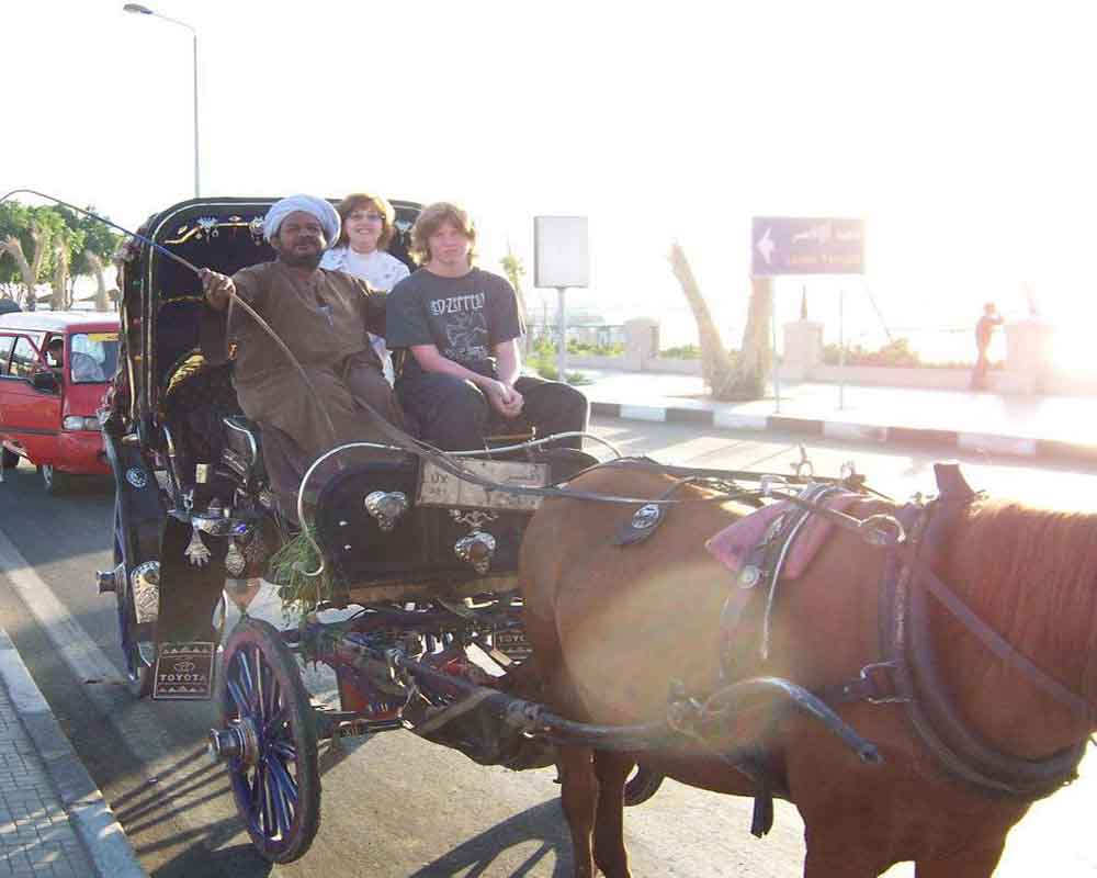 Luxor city tour- Horse Carriage