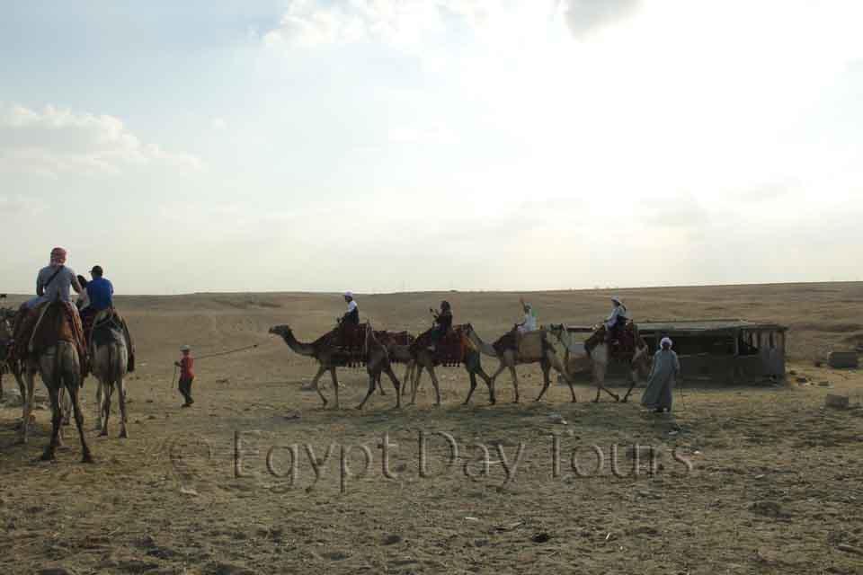 Camel ride in Sakkara