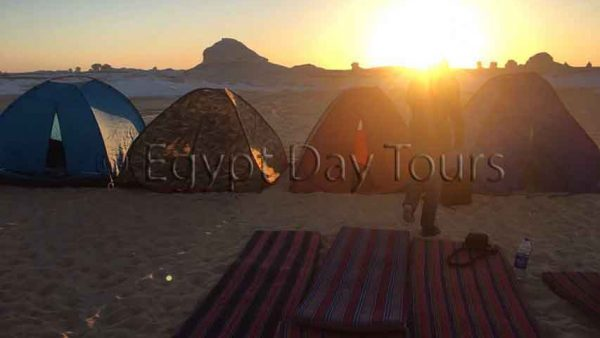 Desert safari overnight