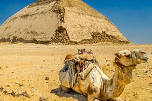 Pyramids Saqqara Dahshur from Port Said