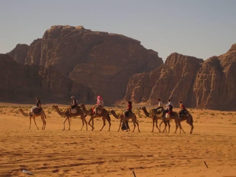 Ride Camel in Sharm