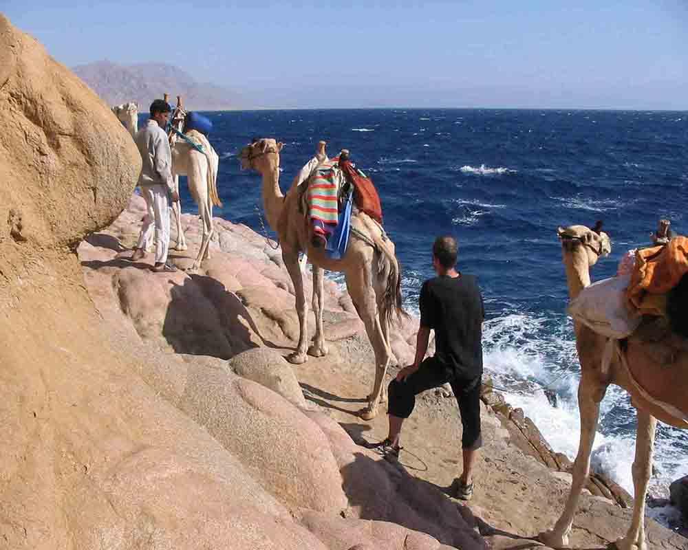desert safari by camel