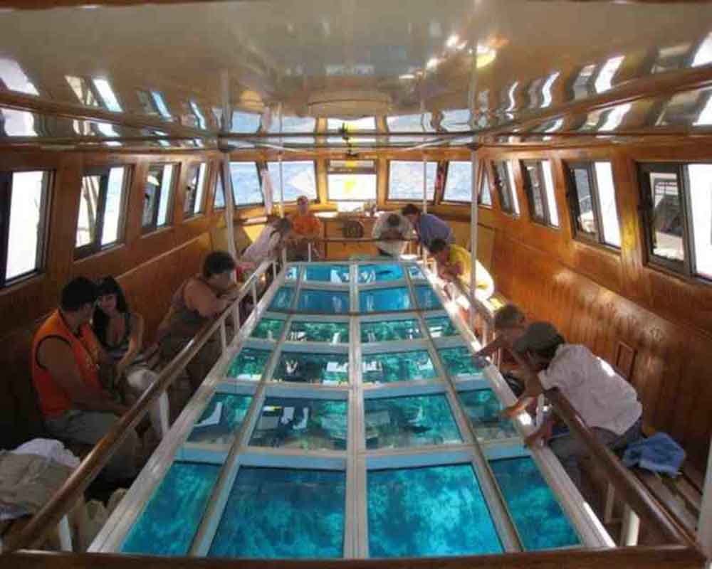 Glass Boat - sharm Red Sea