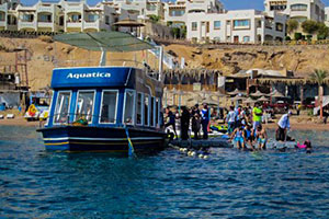 Sharm Glass Boat Tour
