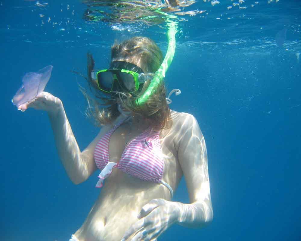 Snorkeling - Giftun Island