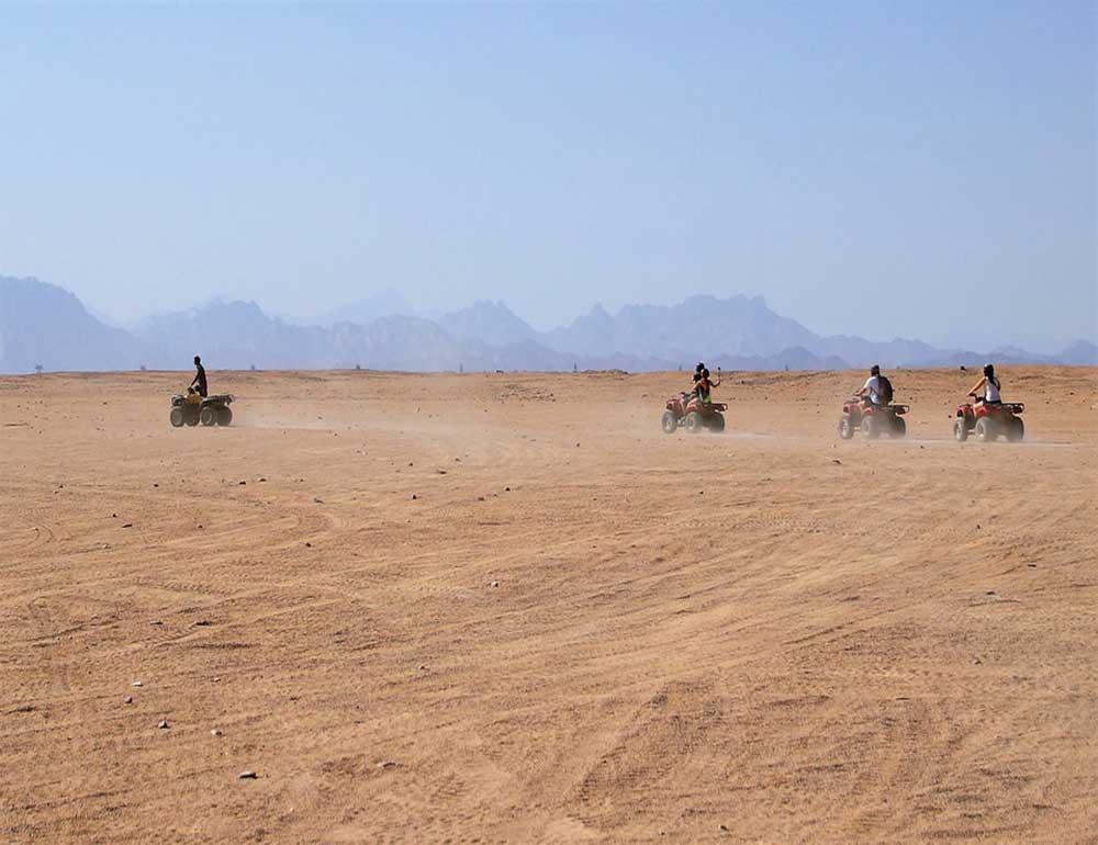 Quad bike safari tour