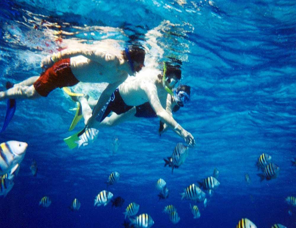 Snorkeling Ras Mohamed national park