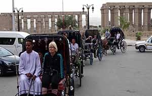 Luxor horse carriage excursion