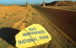 Ras Mohamed Excursion from sharm
