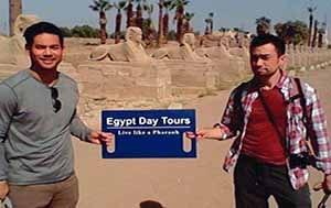 Sakkara Overday from Cairo Airport